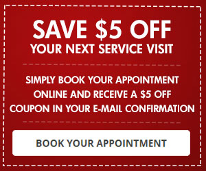 Book Your Appointment